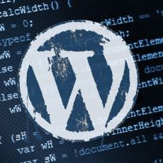 WordPress Website Development: How to do it right?