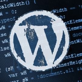 wordpress-stranky, wordpress-website-development